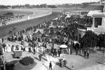 Hipódromo de Maroñas. Año 1916 (Foto 693 FMH.CMDF.IMM.UY)