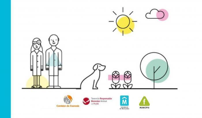 Jornadas de castraciones caninas gratuitas
